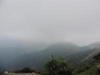 DSCN8157霧 (640x480)
