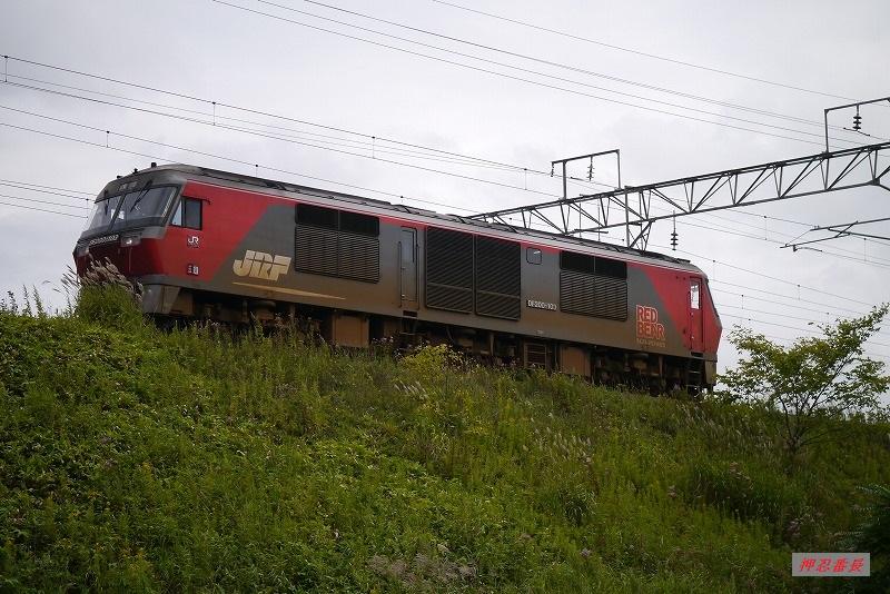 DF200-103 8891 20190822