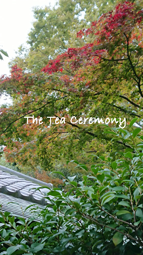 The-Tea-Ceremony-2019-Autumn.jpg