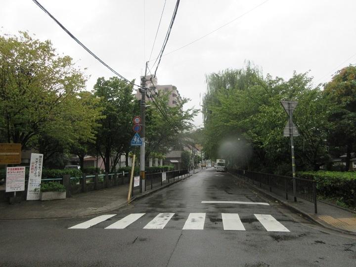 685-25.jpg