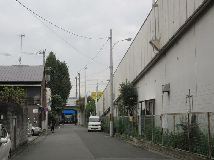 695-2.jpg