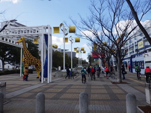 s-RIMG4640.jpg