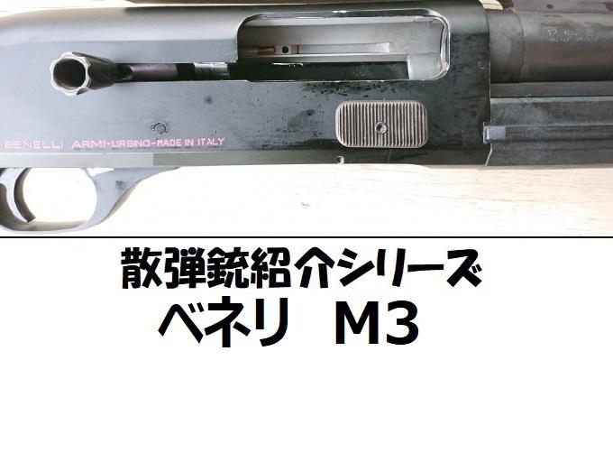 bnlm3sam1.jpg