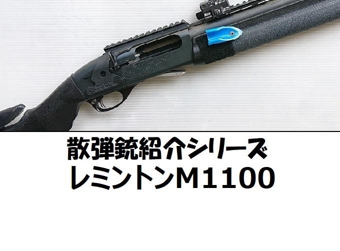 sdjski1100tr2.jpg