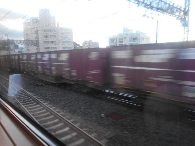 DSCN5065.jpg