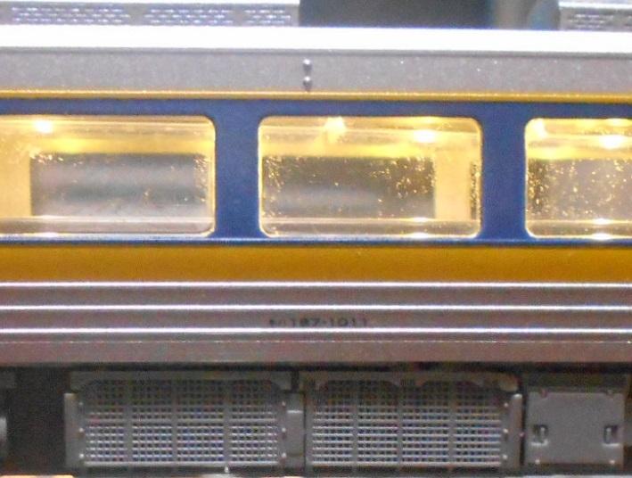 DSCN5556.jpg