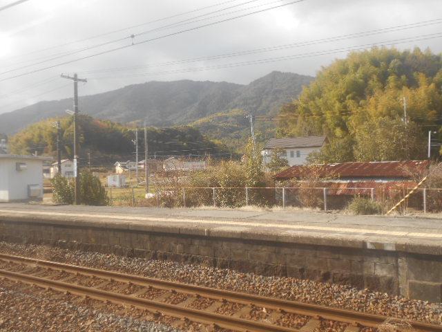 DSCN7075.jpg