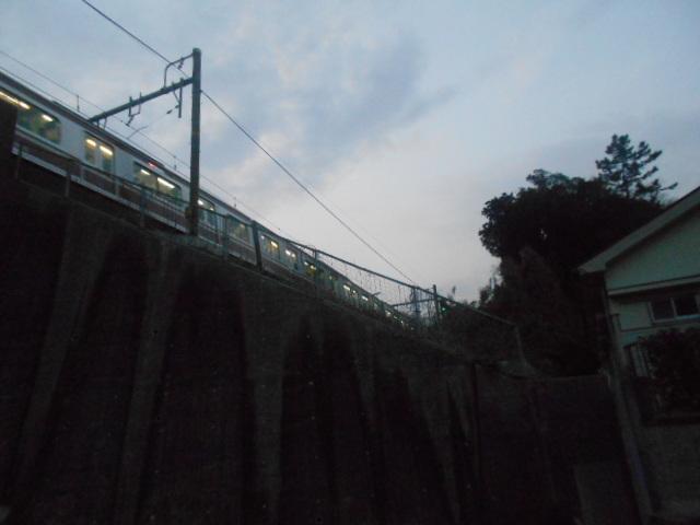 DSCN7646.jpg