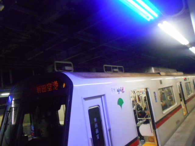 DSCN7652.jpg