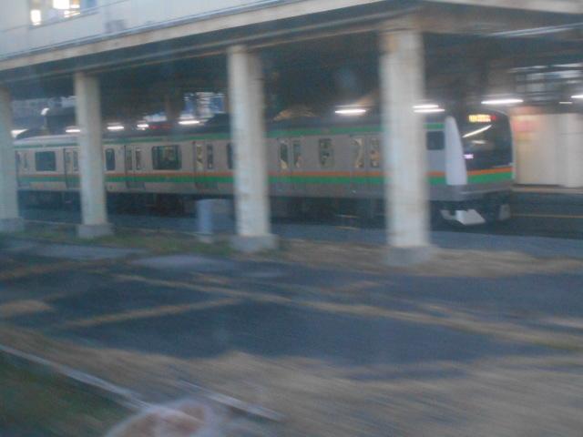 DSCN7919.jpg