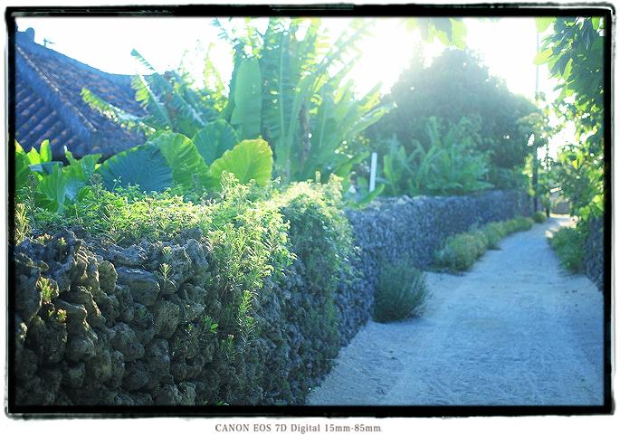 竹富島の風景写真1907taketomijima04.jpg