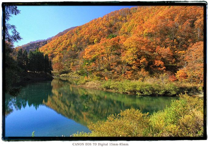 紅葉の神岳ダム1911gifudam02.jpg
