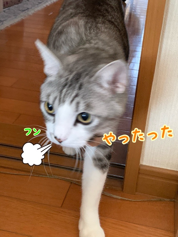 fc2blog_201910152115339a1.jpg