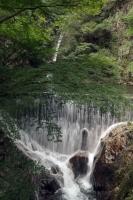 BL190825布引の滝4-4IMG_6143