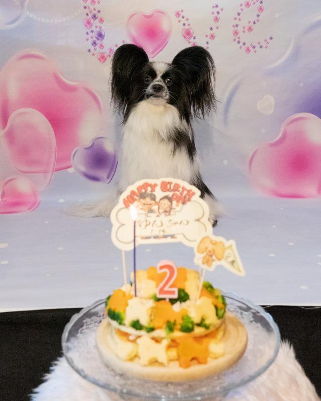 2歳のお誕生日-01