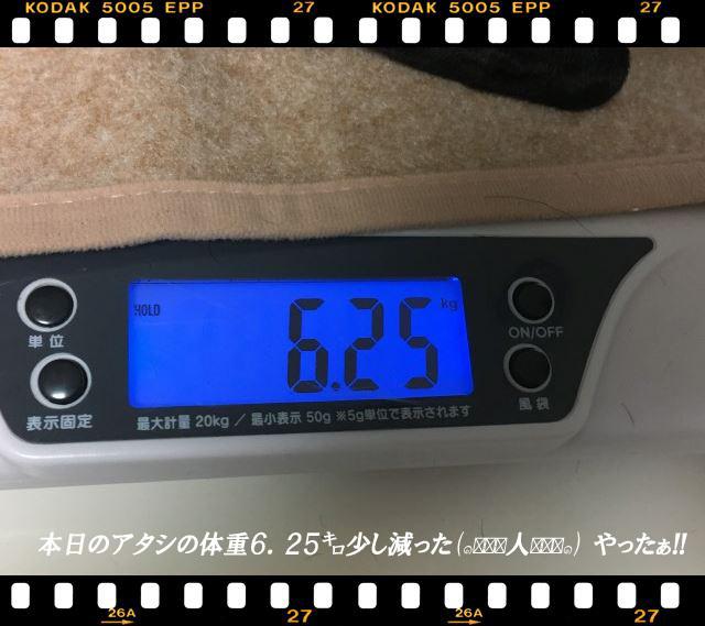 3体重減った