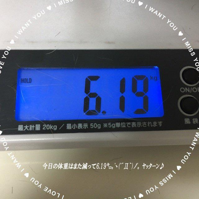 体重○ラスト