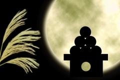 月見 十五夜 団子 ススキ