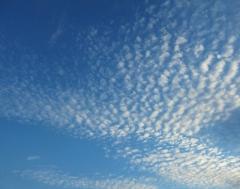 鱗雲 巻積雲 いわし雲 さば雲