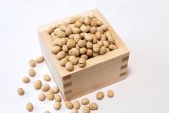 炒り豆 大豆 福豆