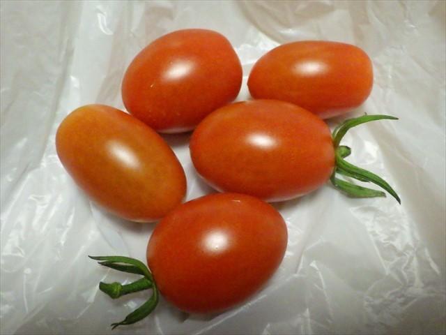 アイコトマト-1