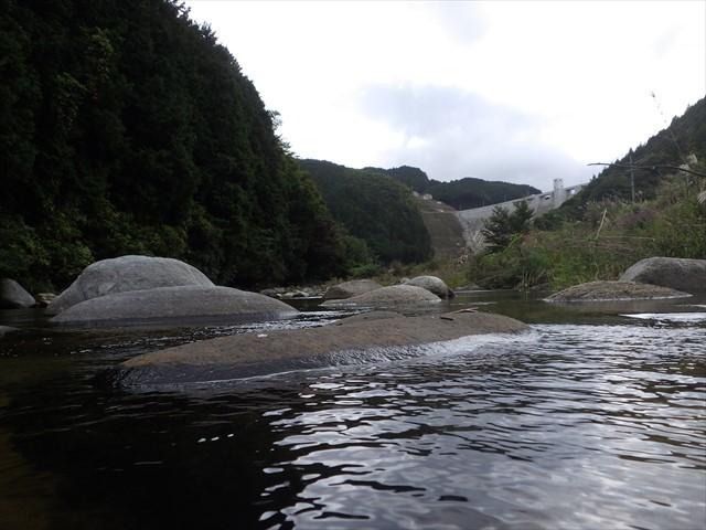 秡川 伊良原ダム下流域