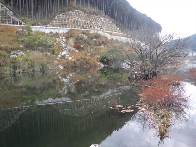 伊良原ダム-2