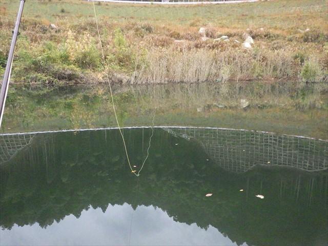 伊良原ダム-4 釣り