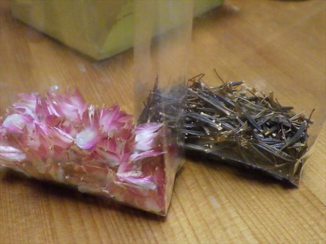 センニチコウとキバナコスモスの種-1