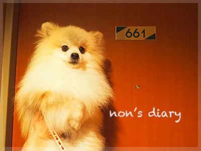 P5311541.jpg