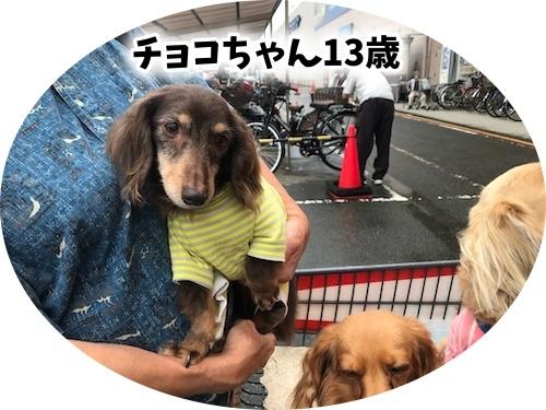 d-20190716-4.jpg
