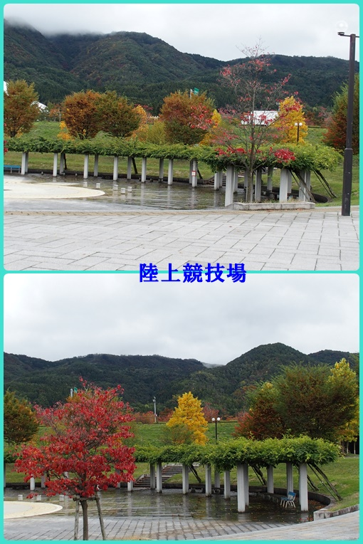 陸上競技場の紅葉