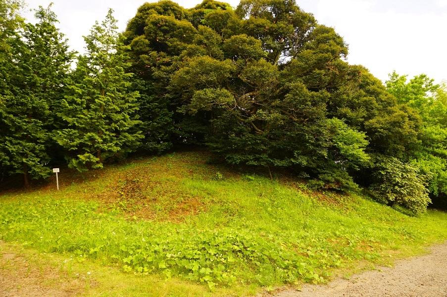 04 岡田山2号墳近景