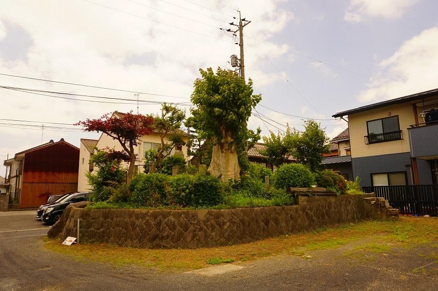 04 塚山古墳(東から)