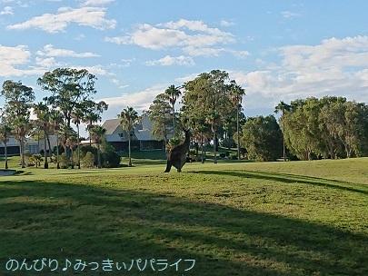 australia2019144.jpg