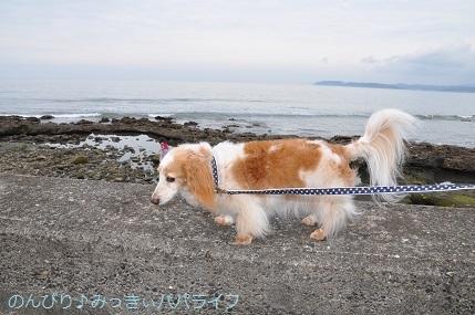 tateyama201907020.jpg