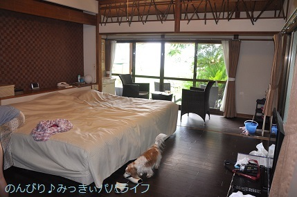 tateyama201907046.jpg
