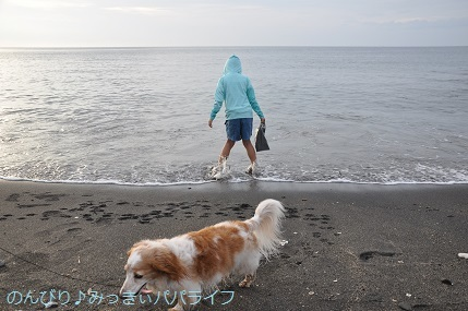 tateyama201907051.jpg
