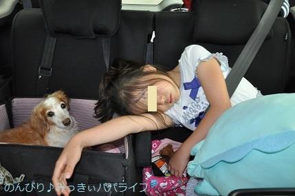 tateyama201907134.jpg