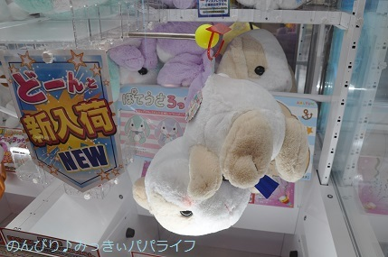 tateyama201907140.jpg
