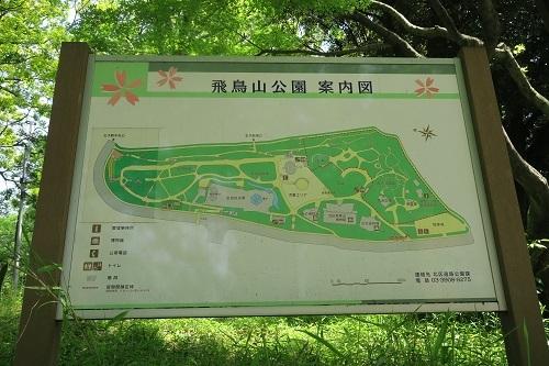 32 飛鳥山公園a