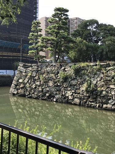 徳島城 堀石垣 (4)a