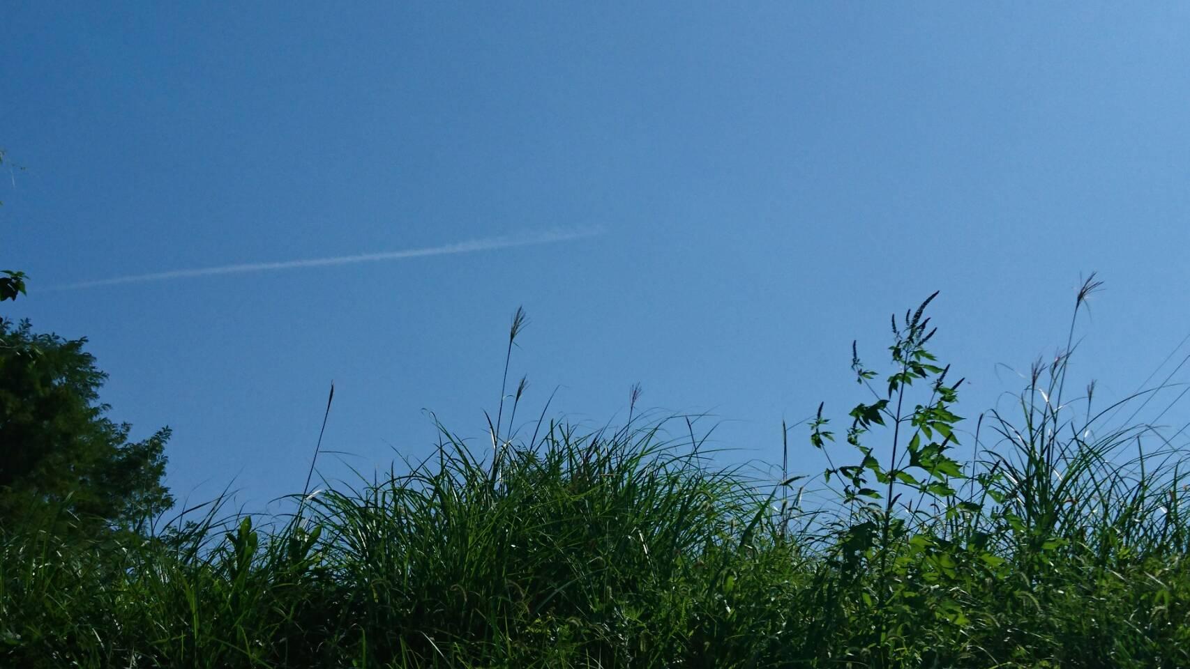 秋の飛行機雲