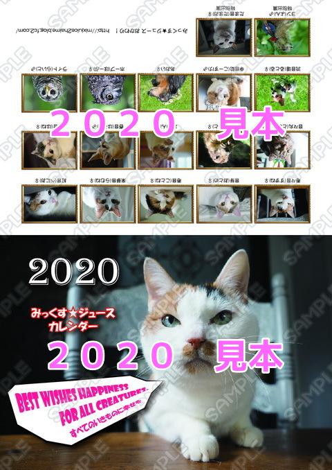 0x0fy7E1tHGsio51571809507_1571809557.jpg