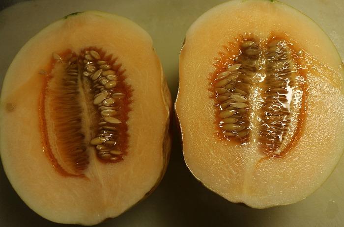 黄色いメロンは切るとオレンジでした 1 7 16