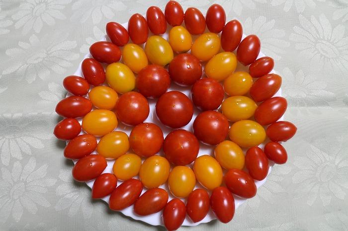トマト盛り合わせ 1 8 16