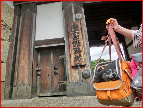 姫路城1 (10)