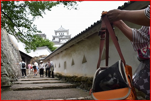姫路城1 (11)