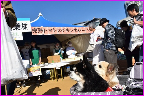 20191123OBC (3)