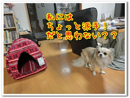 20191226BED (5)